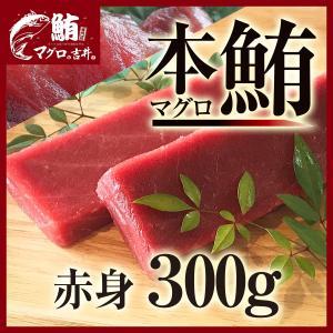 まぐろ マグロ 鮪 本マグロ 赤身 ブロック 柵 刺身 海鮮 グルメ ギフト 本マグロ赤身300g 「解凍レシピつき」 2〜3人前|maguro441