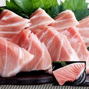 まぐろ マグロ 鮪 国産 本鮪 伊達マグロ 大トロ ブロック 柵 刺身 150g 1〜2人前|maguro441