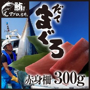 まぐろ マグロ 鮪 国産 本鮪 伊達マグロ 赤身 ブロック 柵 刺身 300g 2〜3人前|maguro441