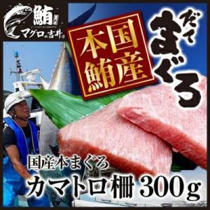 まぐろ マグロ 鮪 国産 本鮪 伊達マグロ カマトロ ブロック 柵 刺身 300g 2〜3人前|maguro441