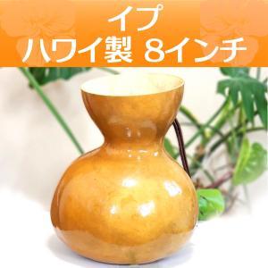 ハワイアン フラダンス 楽器 イプ ヘケ オレ 8インチタイプ (Mサイズ) 278g インテリア|mahalohana