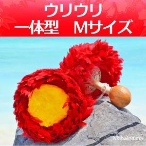 ハワイアン フラダンス 楽器 ウリウリ 一般サイズ Mサイズ 約28cm 一体型 ペア (Bランク)|mahalohana