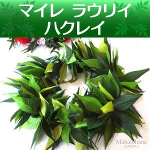 フラ ハクレイ (レイポオ) マイレ ラウリイ ダブル ヘッドバンド (グリーン 3トーン) 54cm 伸縮性|mahalohana