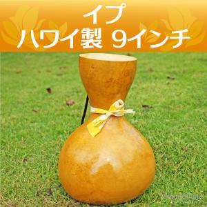 ハワイアン フラダンス 楽器 イプ ヘケ オレ 9インチ (Lサイズ) 440g インテリア|mahalohana