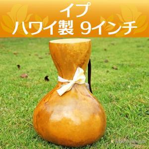 ハワイアン フラダンス 楽器 イプ ヘケ オレ 9インチ (Lサイズ) 473g インテリア|mahalohana