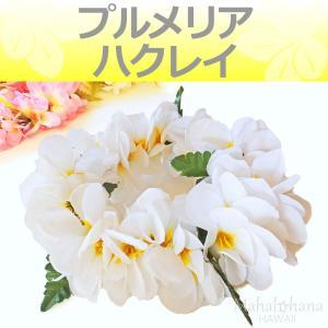 フラ ハクレイ (レイポオ) プルメリア やわらか ダブル ヘッドバンド (ホワイト & イエロー) 50cm 伸縮性|mahalohana