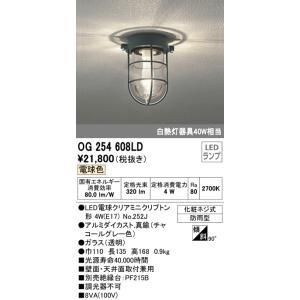 オーデリック OG254608LD ランプ別梱 実物 日本未発売 エクステリアポーチライト 電球色 非調光 LED電球クリアミニクリプトン形