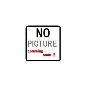 ベビーチェア・シート TOTO YPH62017W2 別売品YKA15取付金具 アンカーボルト 2本入り [■]|maido-diy-reform