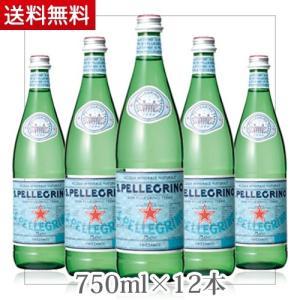 1ケース 12本サンペレグリノ 瓶 750ml ★(北海道、沖縄を除く)★ ジュース お茶