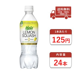 炭酸水 メッツプラスレモンスカッシュ 送料無料 480ml ペットボトル 24本入1ケース