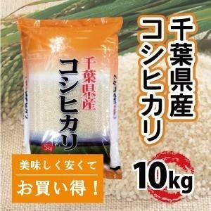 千葉県産 こしひかり 10kg  バランスのとれたツヤ・粘り・甘みが特徴|mailife