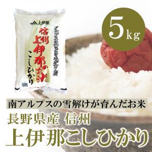長野県産  信州上伊那のお米 こしひかり 5kg 白米 通販 アルプスの雪どけ水が育んだ美味しい特A米|mailife
