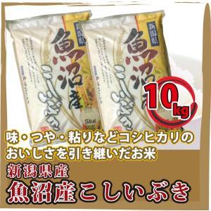 新潟県産  魚沼産 こしいぶき 10kg(5kg×2袋)  白米 通販 日本一のこめ処、新潟で育った美味しいお米|mailife