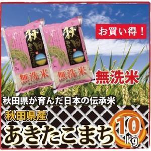 秋田県産 無洗米 あきたこまち 10kg(5kg×2袋)   あきたこまちの本場 秋田県の大自然で育ったお米  洗わず炊けるお米|mailife