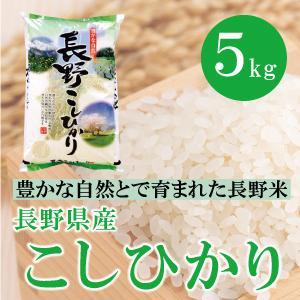 長野県産 長野 こしひかり 5kg  白米 通販 豊かな自然で育まれた美味しいお米|mailife