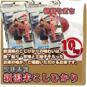 新潟県 新潟米 こしひかり 10kg(5kg×2袋)  白米 通販 日本一のこめ処、新潟で育った美味しいお米 雪国そだち レビューを書いて 送料無料|mailife