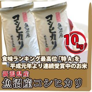 新潟県 魚沼産 コシヒカリ 10kg(5kg×2袋)  高級白米 通販 日本一のこめ処、新潟で育った美味しいお米|mailife