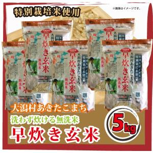 白米同様手軽に炊ける 大潟村あきたこまち 早炊き玄米 無洗米 5kg (1kg×5) 栄養機能食品 鉄分豊富|mailife