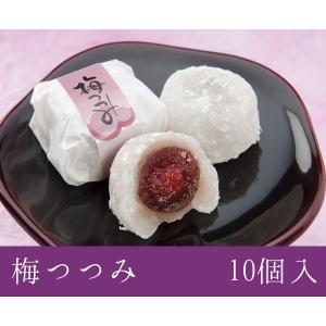 福井銘菓 和菓子スイーツギフト 梅つつみ 10個入 村中甘泉堂 maimonechizen