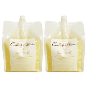 2本セット 美容室 エステ プロ サロン 人気 洗顔 シャンプー 手洗い ボディー ソープ 業務用 無添加 化粧品 青春の泉 セカンドバブル 2L 抗ウイルス|maimu-shop