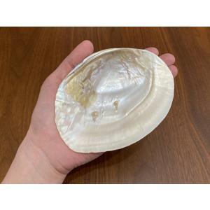 パールシェル イケチョウ貝 ホワイトセージ5gプレゼント トレイ 浄化 プレゼント インテリア 香皿 maimustone-y 02
