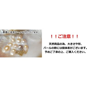 パールシェル イケチョウ貝 ホワイトセージ5gプレゼント トレイ 浄化 プレゼント インテリア 香皿 maimustone-y 03