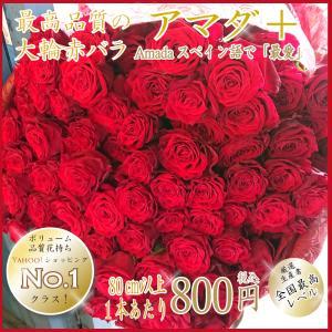 バラの花束 赤バラ 大輪 アマダ 本数指定 1本800円 赤色 還暦祝い  母の日 退職祝 フラワー...