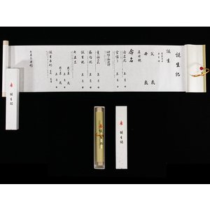 誕生記 単品 tnjo|maisugatarental