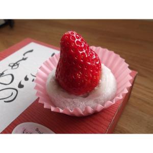 苺大福 いちごのしあわせ 和菓子 ギフト (2個セット)|mak|02