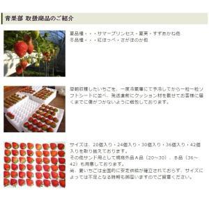 苺大福 いちごのしあわせ 和菓子 ギフト (2個セット)|mak|05