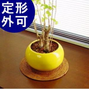 アジアン雑貨 インテリア アタ製 プレースマット 鍋敷き バリ雑貨 makai
