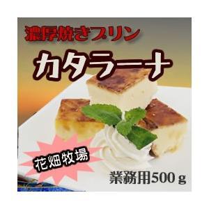 花畑牧場 カタラーナ R (業務用) 冷凍 500g