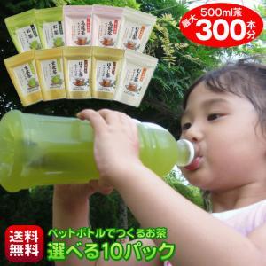 送料無料 500ml水出し茶が最大300本分作れる細長〜いティーバッグセット 6種類からお好みで10パック選べる(ペット選べる10)