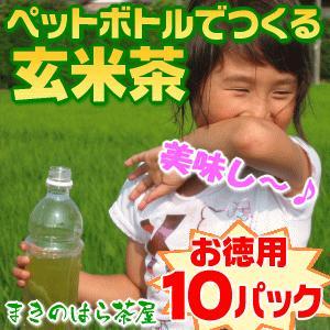 送料無料 500ml玄米茶が300本分作れる細長〜いティーバッグセット 30個入り×10パック お徳用 (ペット玄米10)