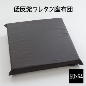 クッション A Simple Leathe もっちり低反発ウレタン座布団 50×54センチ makura