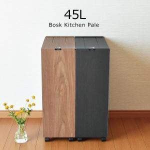 ゴミ箱 おしゃれ 45リットル キッチン用 分別 大型 スリム リビング用 蓋付き フタ付き ダストボックス 木製調 ごみ箱 日本製 ( バスク キッチンペール 45L )の画像