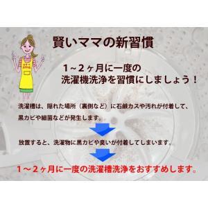 洗濯槽クリーナー 黒カビ ヌメリ 悪臭 を 強力洗浄「 洗濯槽クリヤ 1箱(3回分3袋入)」|mamano|02