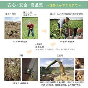 食パンミックス 大豆粉食パンミックス 1斤用 mamapan 200g 糖質制限 mamapan 07