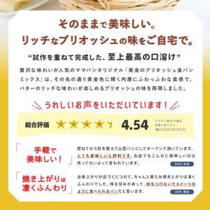 食パンミックスセット 黄金のブリオッシュ食パンミックス 1斤用 mamapan 250g×20 まとめ買い mamapan 03