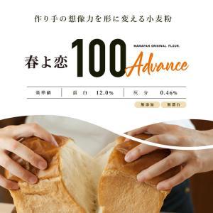 国産 強力粉 春よ恋100 2.5kg パン用小麦粉|mamapan|03