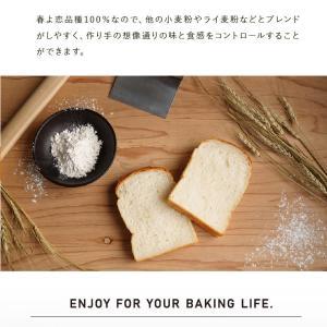 国産 強力粉 春よ恋100 2.5kg パン用小麦粉|mamapan|07