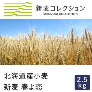 強力粉 新麦コレクション 新麦 春よ恋 2.5kg 春よ恋100% 北海道産小麦粉 季節限定 new
