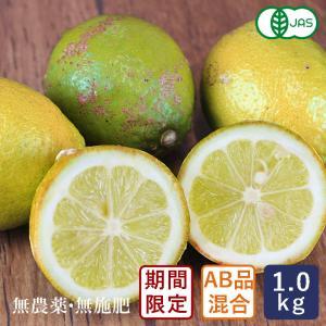 有機JAS 有機レモン(A品B品混合) 中原観光農園 1kg 国産 2021年3月12日am7:59受付、3月19日出荷【支払いはクレジットカード・全額ポイントのみ】|mamapan