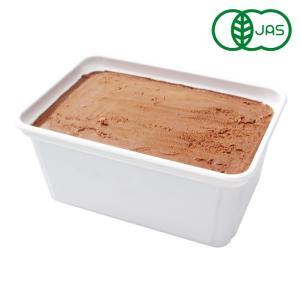 有機JAS SOYジェラート チョコレート Mine! 1000ml アイスクリーム オーガニック 豆乳アイス