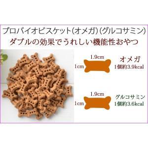 犬用おやつ おやつ ビスケット プロバイオビスケット グルコサミン 80g メール便送料無料(代引き不可) |mamav