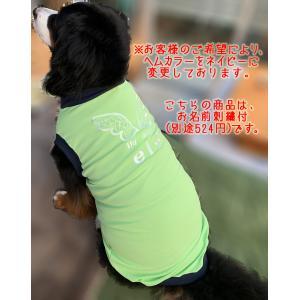 犬服 ドッグウェア 3.5Lサイズ(超大型犬) DOGタンクトップ COOL!!My angel マイエンジェル ポイント10倍 レターパック送料無料(代金引換別途送料600円〜)|mamav