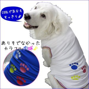 犬服 ドッグウェア 2.5Lサイズ(大型犬) DOGタンクトップ COOL!!カラフル肉球♪ ポイント10倍 メール便送料無料(代金引換別途送料600円〜)|mamav