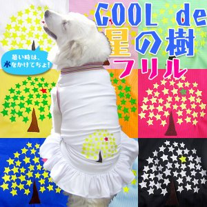 犬服 4Lサイズ(超大型犬) DOGフリル COOL del 星の樹♪クールで星の樹♪ レターパック送料無料(代金引換別途送料600円〜)|mamav