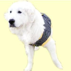 犬服 ドッグウェア 3.5Lサイズ(超大型犬) DOGタンクトップ 黒ボーダー♪ ポイント10倍 レターパック送料無料(代金引換別途送料600円〜)|mamav