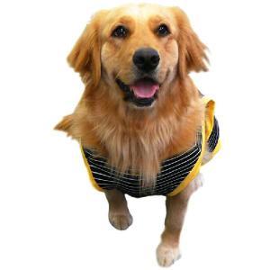 犬服 ドッグウェア 2Lサイズ(大型犬) DOGタンクトップ 黒ボーダー♪ポイント10倍 メール便送料無料(代金引換別途送料600円〜)|mamav